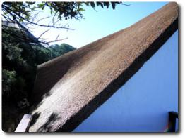 High quality thatching by Cintsa Thatching