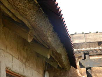 Onduline Over-Sheeting on Leaking Thatch Roof