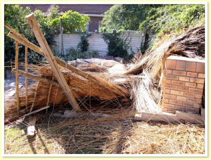 Thatch Disasters - don't let this happen to you!