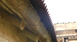 Onduline oversheeting on thatch roof