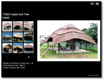Thatch Lapa and Entertainment Area image gallery