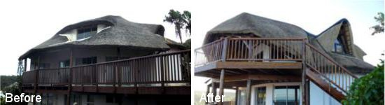 Thatch roof renovation and house renovation