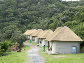 Silaka Thatching Project - Eastern Cape, South Africa